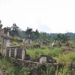 Reruntuhan bangunan Sekolah Dasar